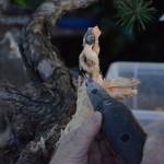 limpieza de los restos de piel