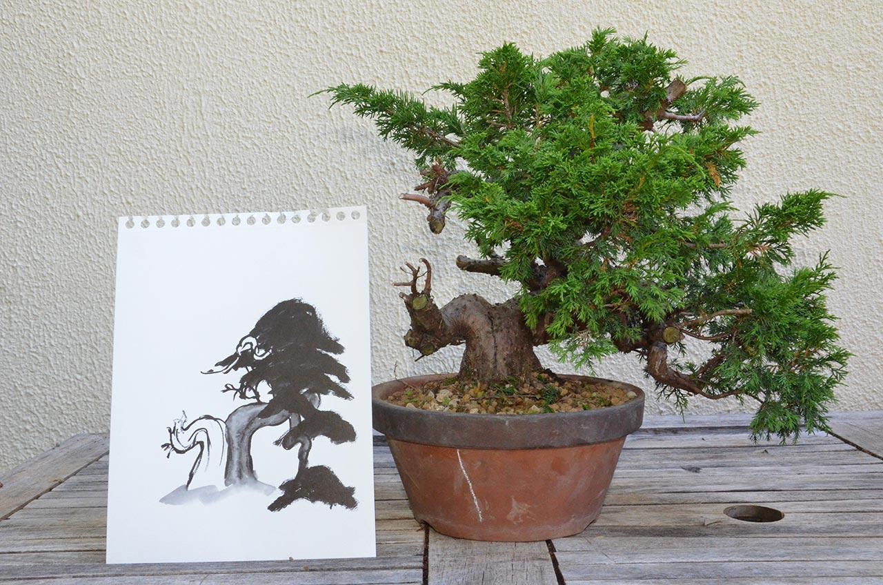 diseño y árbol
